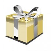 Promotion Gift | แถมฟรีของสัมนาคุณ